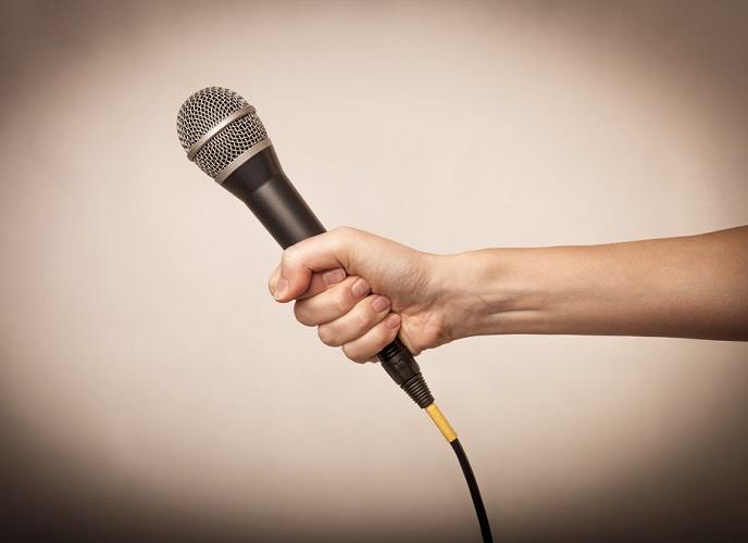 NDR_interview mic_688